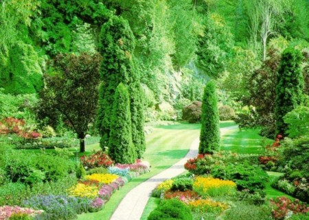 l'orto - Organizzare Un Giardino Piccolo